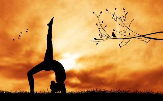 练习瑜伽能给身体带来什么好处?