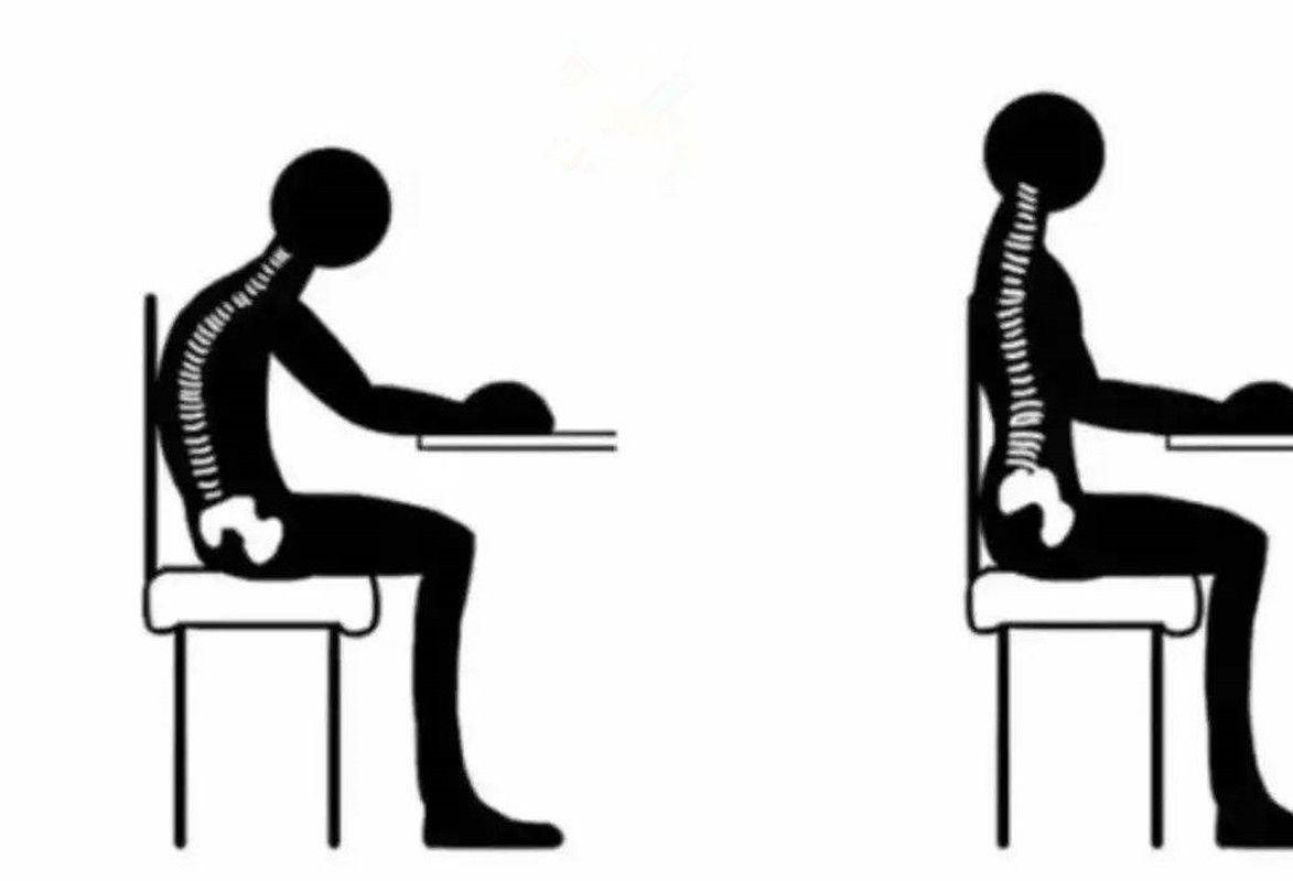 为啥你坐的时候,脊柱是弓背的呢?